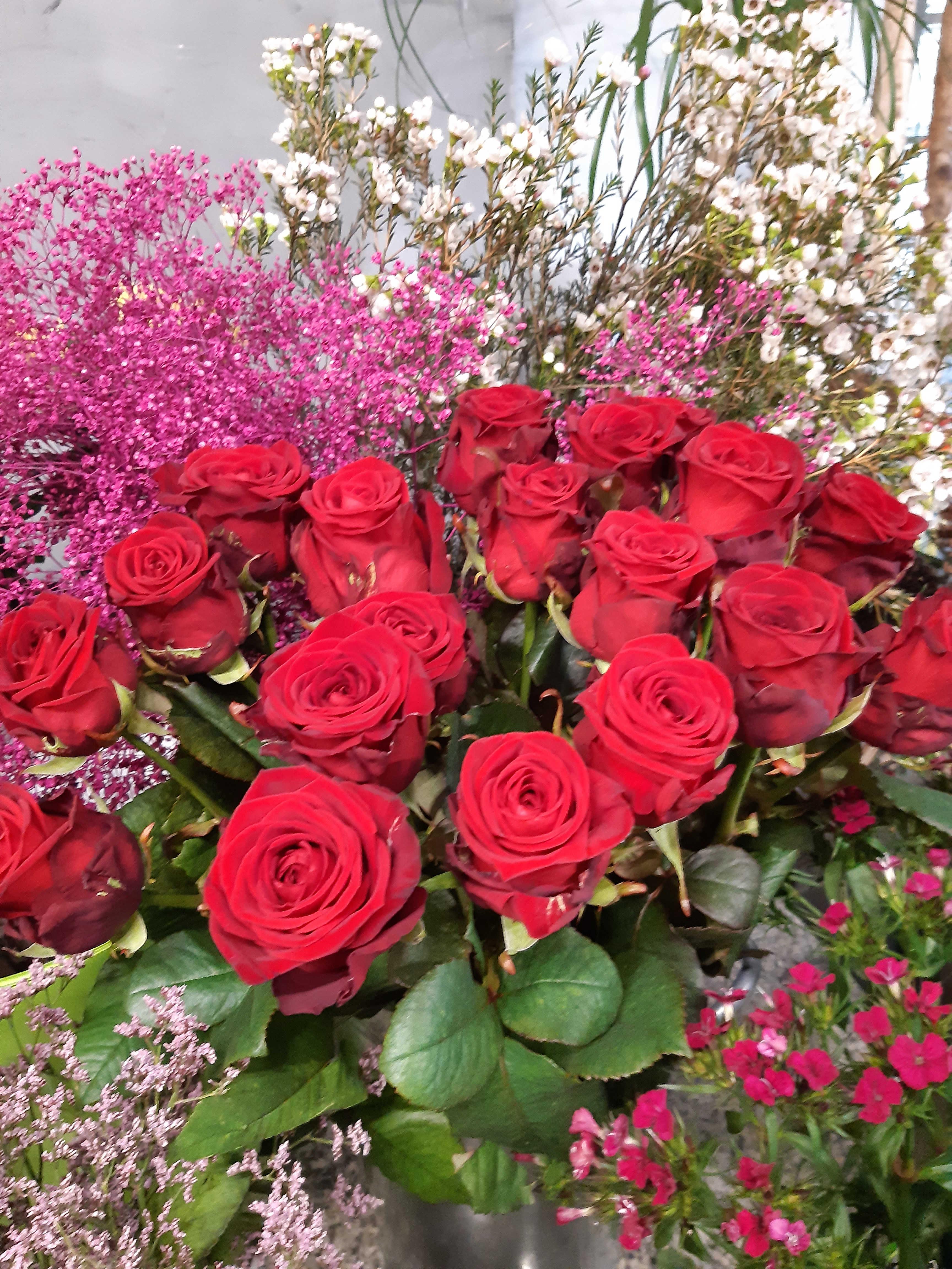 Strauß rote Rosen - 9 langstielige Rosen